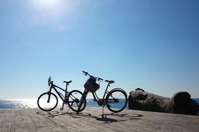 자전거 렌탈 - 대만 자전거 여행
